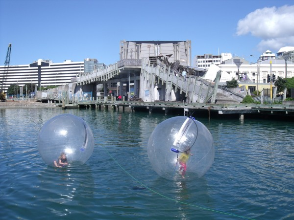 Zorbing at the Lagoon, Wellington