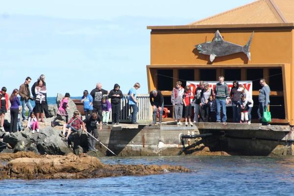 Island Bay Marine Education Centre