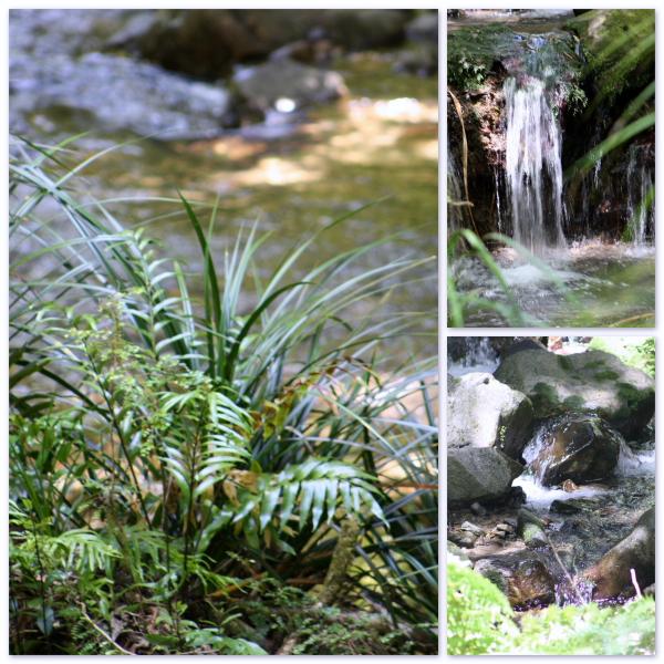Streams & waterfalls