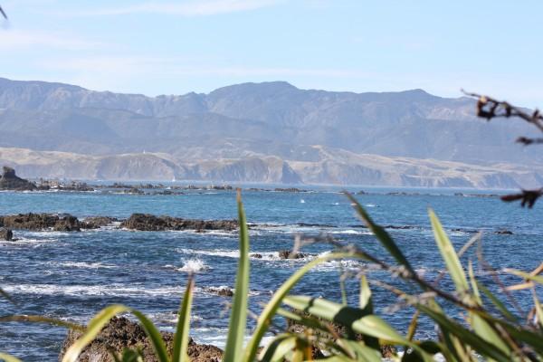 Beautiful scene off Wellington's south coast