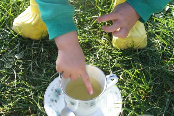 SOMETHING CUTE - ALICE, MY LITTLE GREEN TEA LEAF!