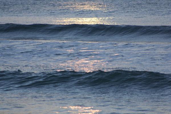 Lyall Bay winter sun