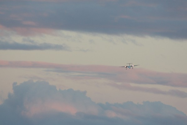 Plane coming into land at sundown over Lyall Bay