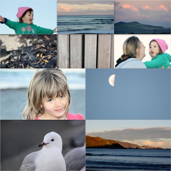 Lyall Bay winter sun by Charlotte