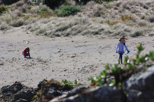 Princess Bay beach