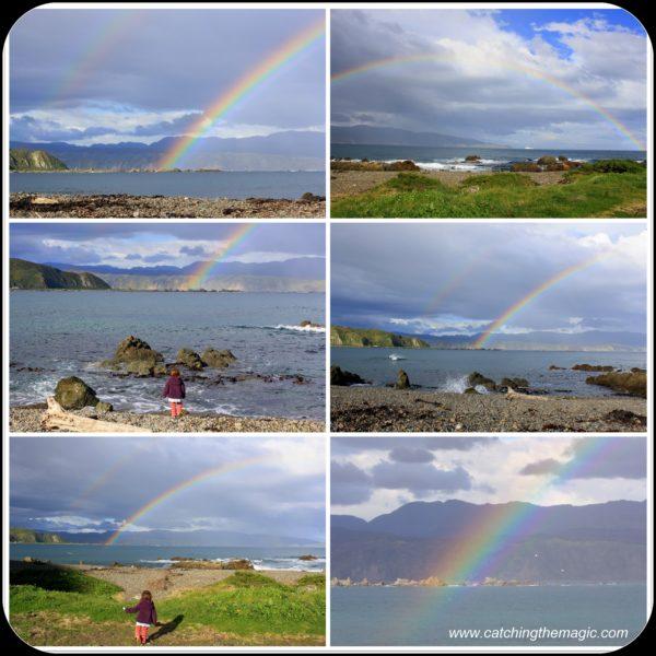 Rainbows of spring in Wellington