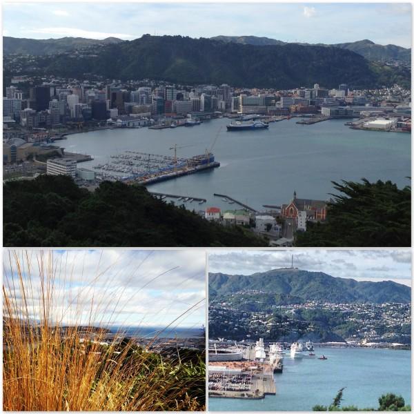 Wellington - You Beauty!!