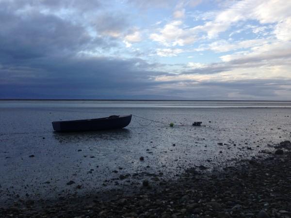Atawhai tidal mudflats, Nelson, New Zealand