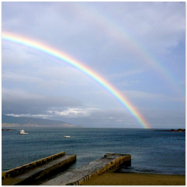 Double rainbow over Island Bay, Wellington, New Zealand after 9 weeks of no rain