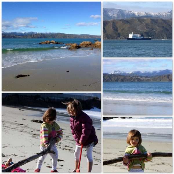 Scorching Bay, Wellington, New Zealand, 29 May