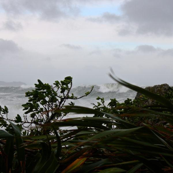 south coast of Wellington storm June 2013