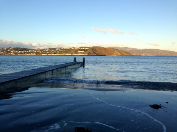 Lyall Bay Beach, Wellington, in winter x