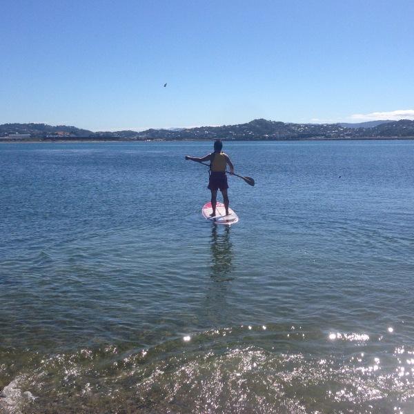 Paddle boarding Lyall Bay