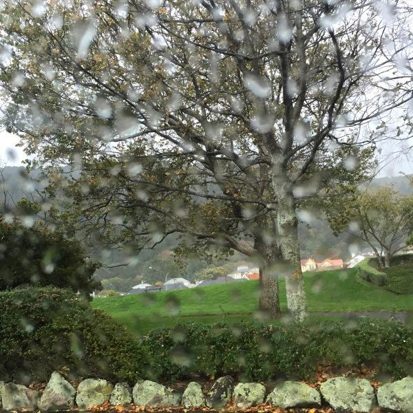 Rain at school pick up