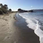 Worser Bay, Wellington, bathed in winter sunshine.