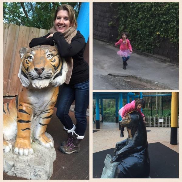 Sun Bears and Tiger