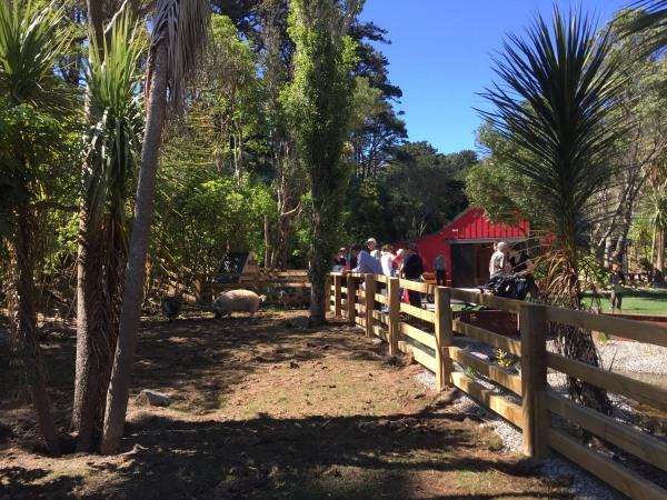 Kune Kune pigs enclosure at 'Meet The Locals'.