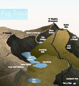 Pyg Track
