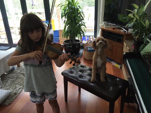 Alice practicing her violin