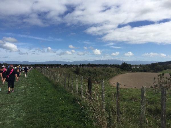 Around the edge of the vineyards
